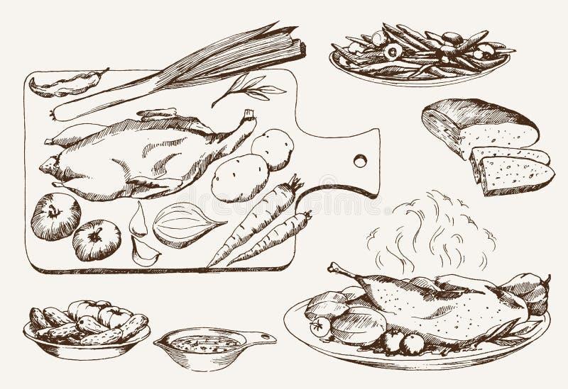 Naczynie dzikie kaczki ilustracji