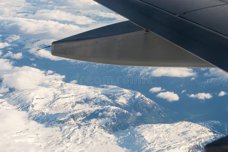 nad śniegu skrzydłem obrazy royalty free