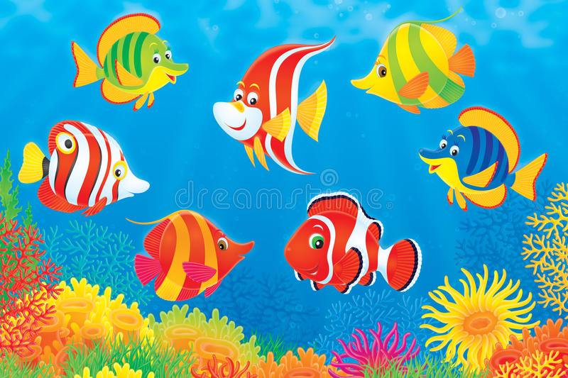 nad korala ryba rafa tropikalna royalty ilustracja