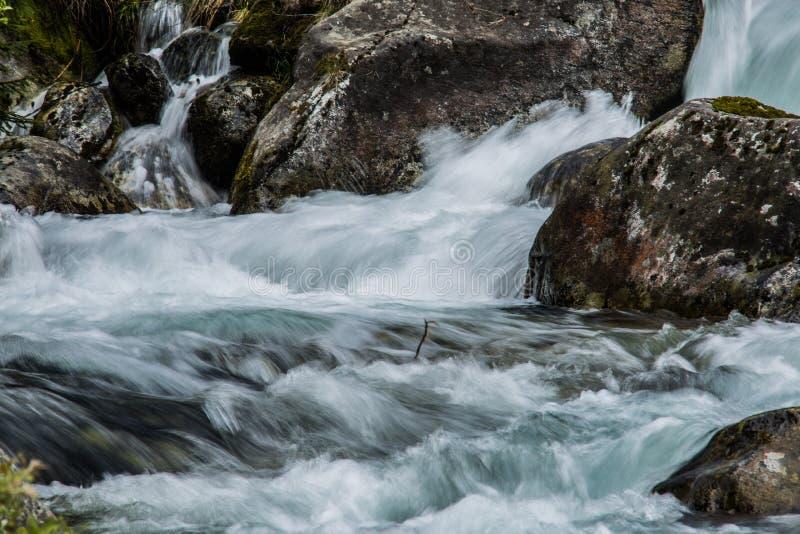 Nad mechatymi skałami strumienia lasowy bieg fotografia stock