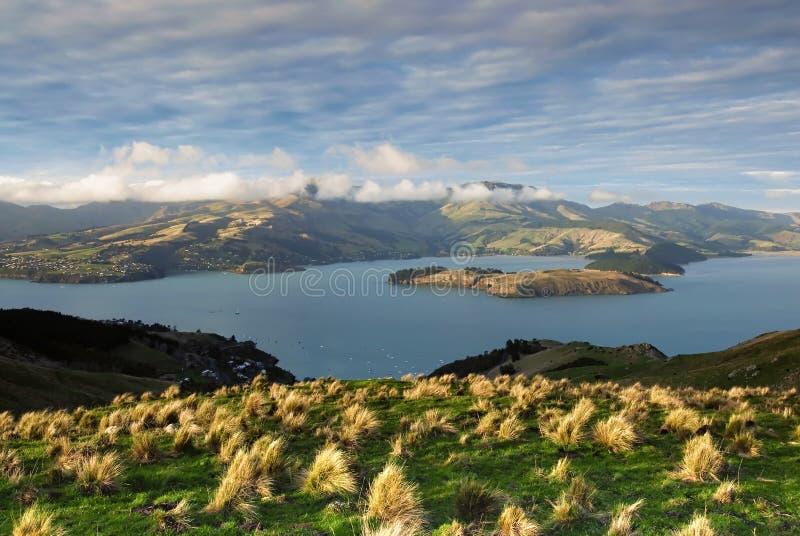 Lyttleton schronienie, Christchurch, Nowa Zelandia obrazy stock