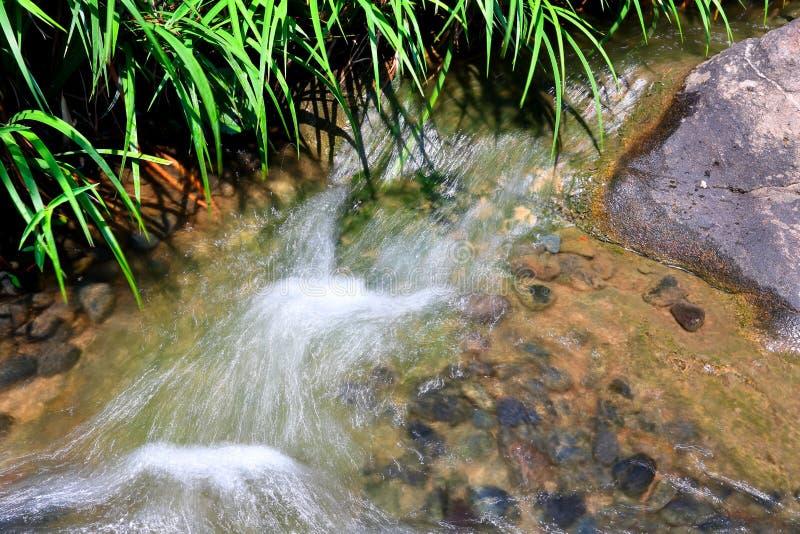 nad skały wodą bieżącą obrazy royalty free