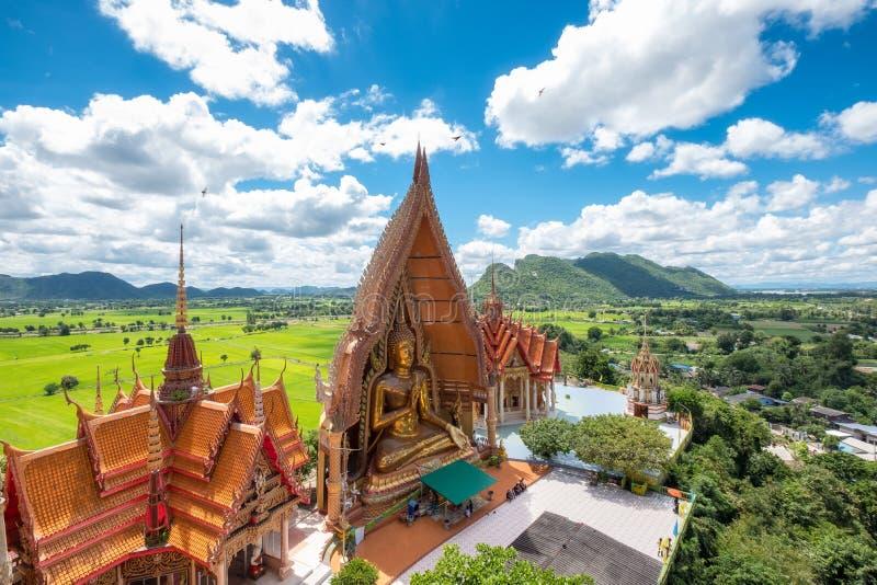 Nad widok złoty kościół z dużym Buddha ryż i statuy polem zdjęcie stock