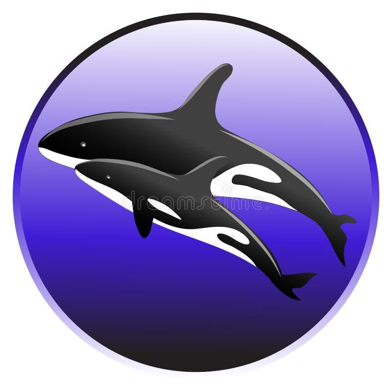 Nadada de la orca del vector en el océano con un bebé stock de ilustración