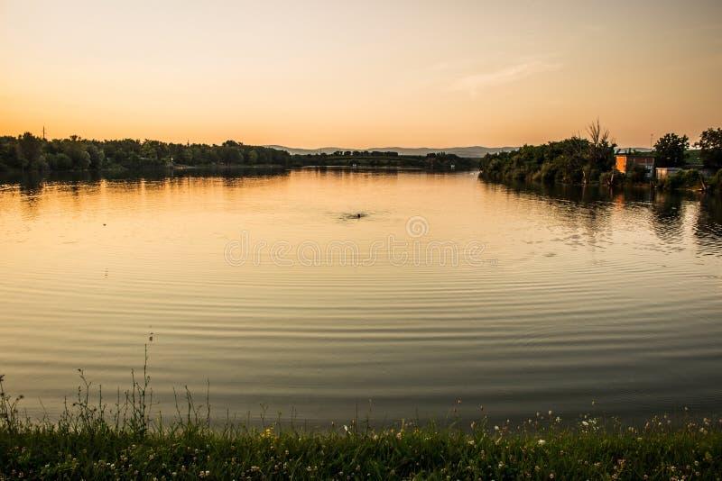 Nadada de la puesta del sol imagen de archivo libre de regalías