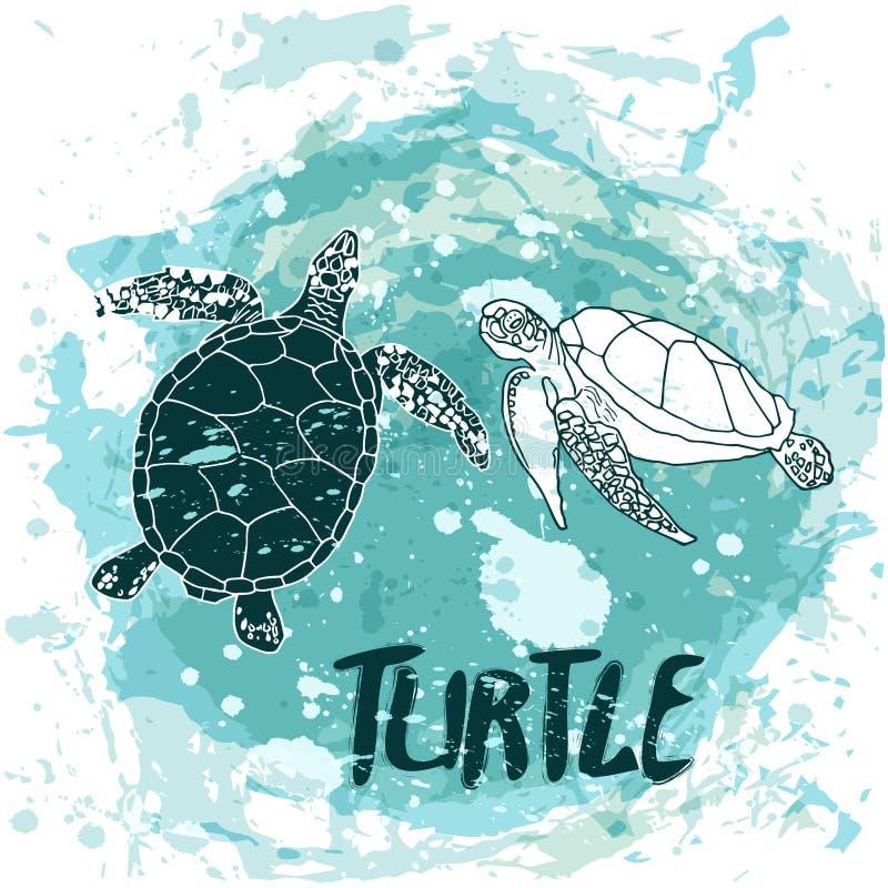 Nadada de las tortugas en el océano libre illustration