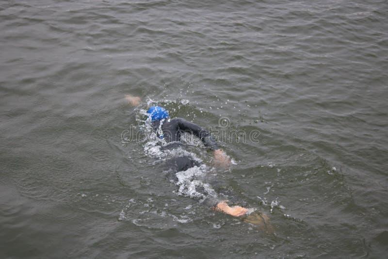 Nadada saudável do esporte do exercício do triathlete do Triathlon foto de stock royalty free