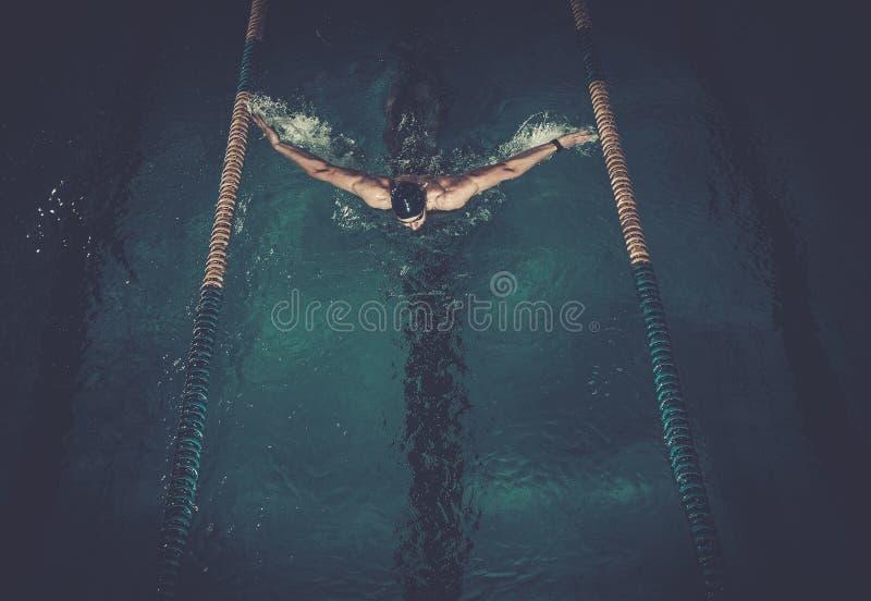 Nadadas do homem usando bruços fotos de stock