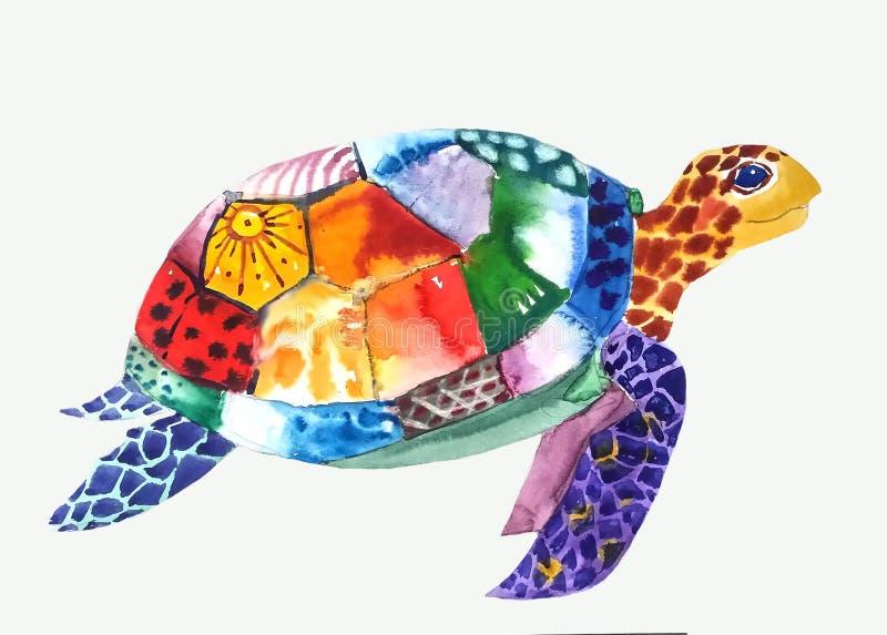Nadadas modeladas da tartaruga à direita imagem de stock