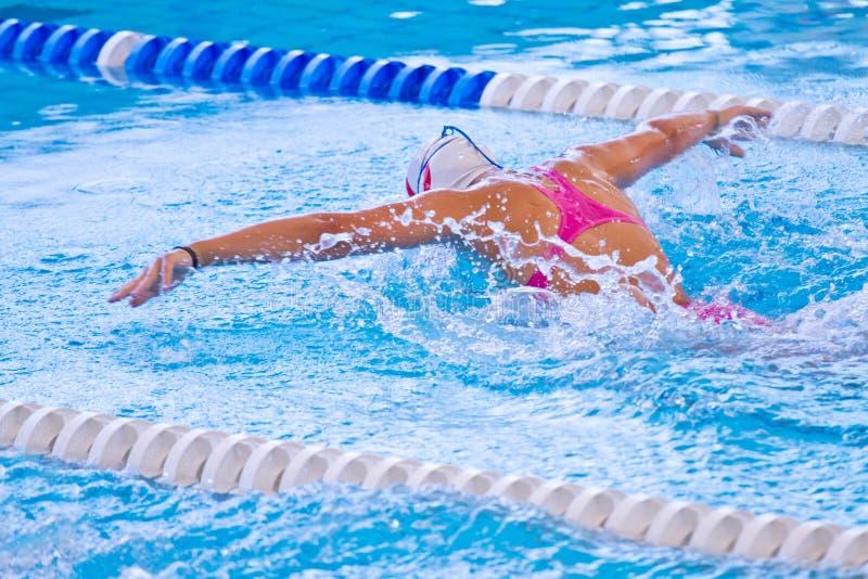 Nadador imagen de archivo