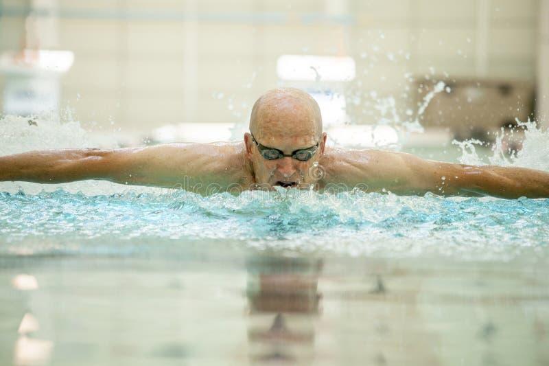 Nadador da borboleta das pessoas de 76 anos fotografia de stock