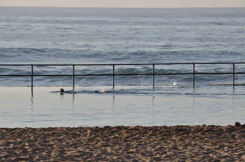 Nadador de la madrugada fotografía de archivo