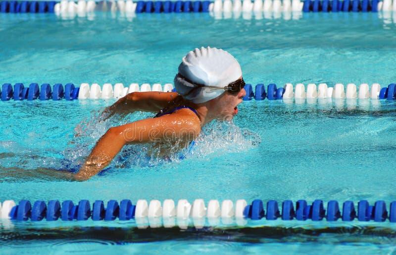 Nadador de la mariposa foto de archivo libre de regalías