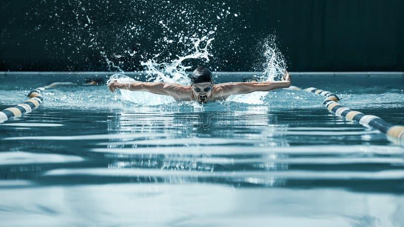 Nadador dinâmico e apto no tampão que respira executando o curso de borboleta fotos de stock