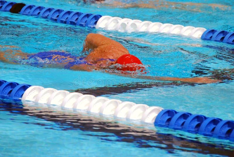 Nadador do estilo livre fotos de stock royalty free