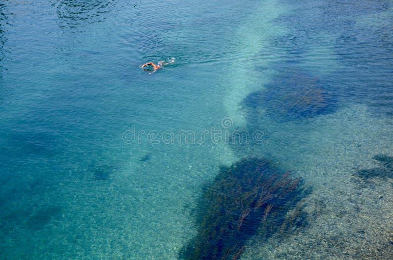 Nadador en las aguas claras del río Rhone foto de archivo libre de regalías