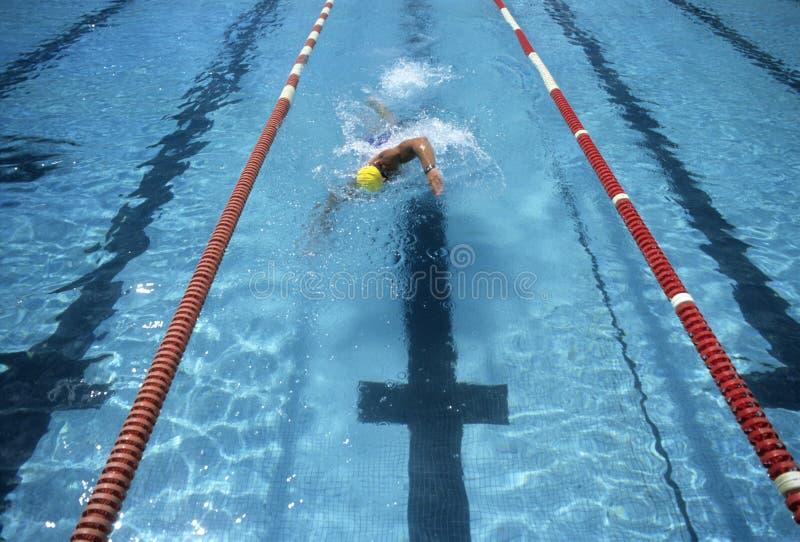 Nadador que compete ao revestimento foto de stock