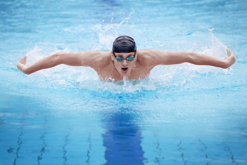 Nadador que executa o curso de borboleta foto de stock royalty free