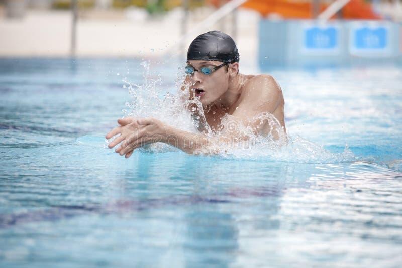 Nadador que realiza la braza en piscina del deporte foto de archivo libre de regalías