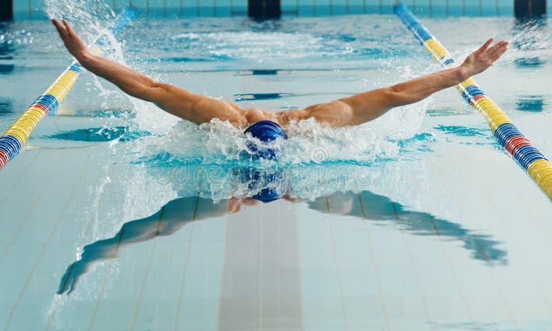 Nadador que usa técnica de la braza imagenes de archivo