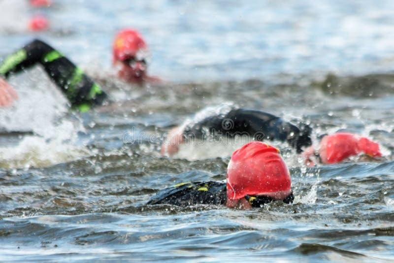 Nadadores durante a competição imagens de stock