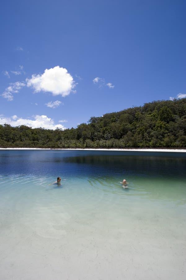 Nadadores no lago 1 da bacia foto de stock royalty free