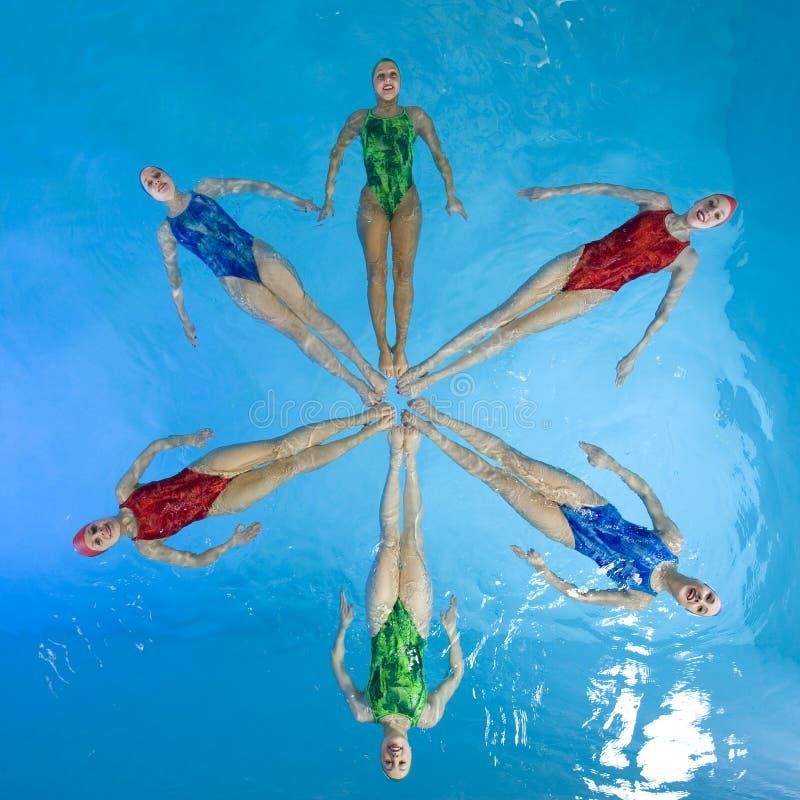 Nadadores sincronizados imagem de stock