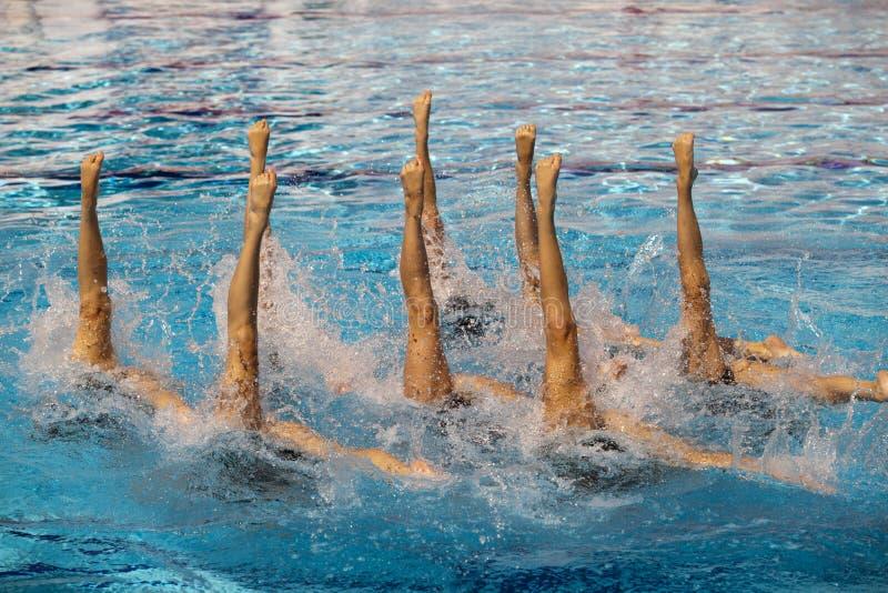 Nadadores sincronizados fotos de archivo