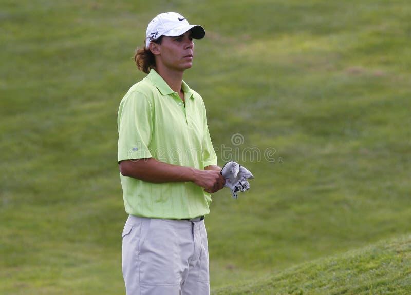 Nadal på golf 057 arkivfoto