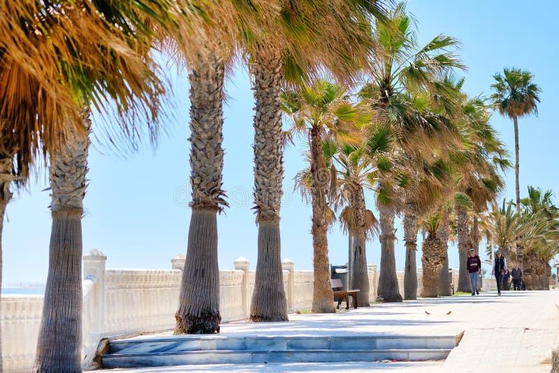 Nadbrzeże deptaka Pilar De Los angeles Horadada hiszpański miasteczko w prowincji Alicante obraz stock