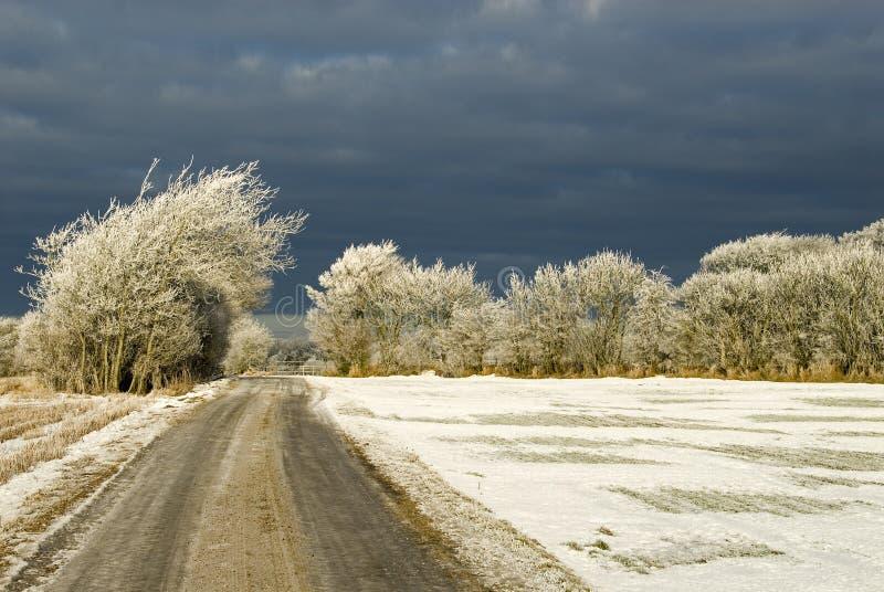 nadchodząca burza śnieżna zdjęcia royalty free