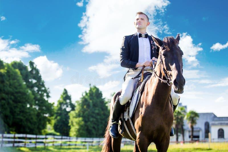 Nadenkende goed-geklede mensenzitting op paard tegen bewolkte hemel stock afbeeldingen