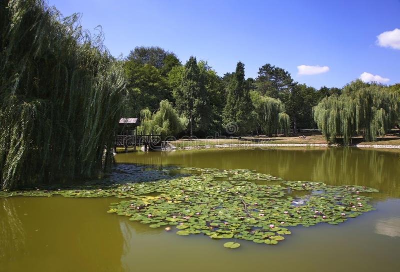 Naderde park w Debrecen Węgry obraz stock