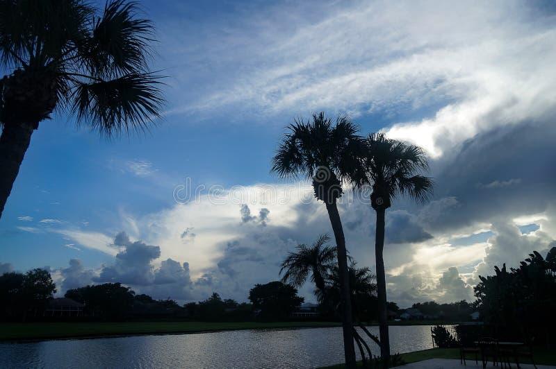 Nadjeziorny widok drzewka palmowe i pomarańczowy ognisty zmierzch zdjęcia royalty free