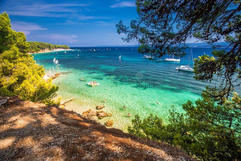 Nadmorski deptak na Brac wyspie z sosnami i turkusu oceanu jasną wodą, Bol, Brac, Chorwacja zdjęcia stock