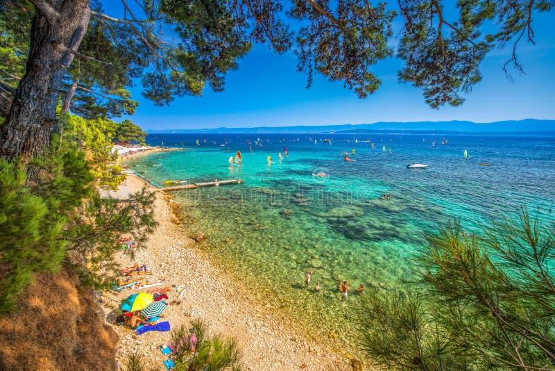 Nadmorski deptak na Brac wyspie z sosnami i turkusu oceanu jasną wodą, Bol, Brac, Chorwacja fotografia stock