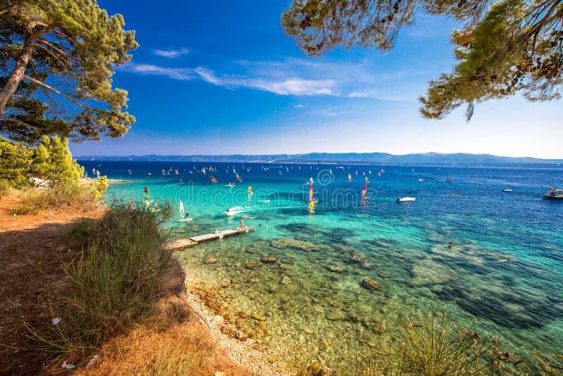 Nadmorski deptak na Brac wyspie z sosnami i turkusu oceanu jasną wodą, Bol, Brac, Chorwacja zdjęcie royalty free