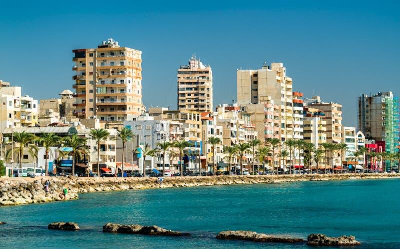 Nadmorski opona w Liban zdjęcie stock