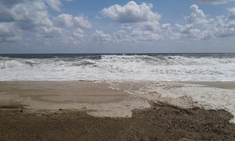 Nadmorski wzrostów Plażowy Seashore fotografia royalty free