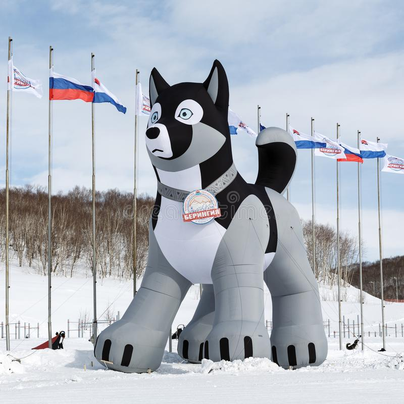 Nadmuchiwana pneumatyczna postać łuskowaty sanie pies - symbol Kamchatka sania psa rasa Beringia obrazy royalty free
