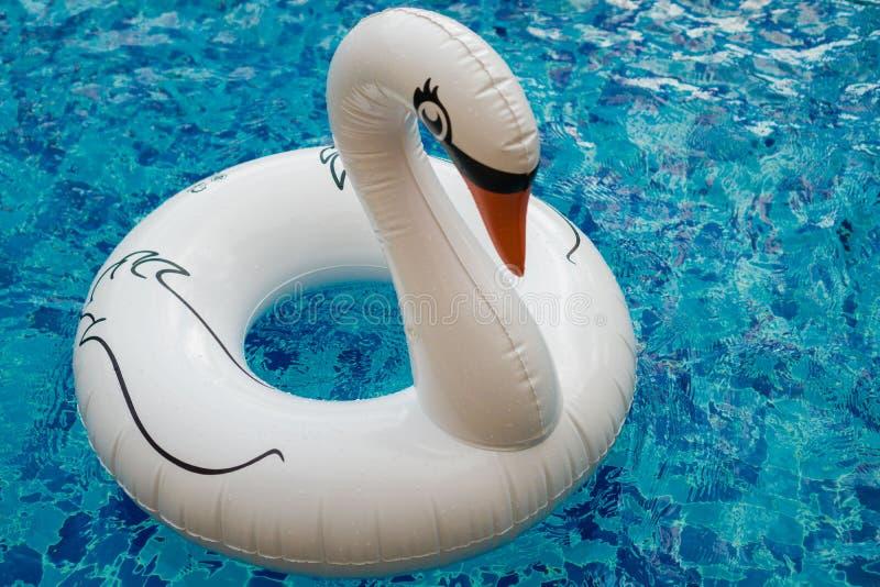 Nadmuchiwany biały łabędź w basenie zdjęcie royalty free