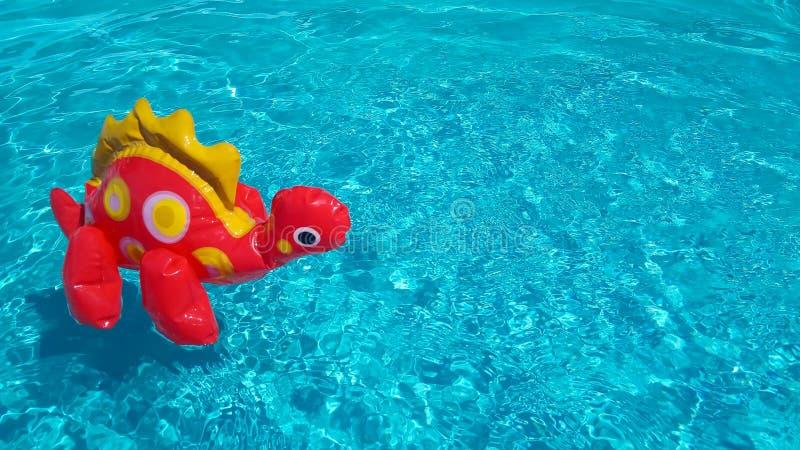 Nadmuchiwany dinosaur w czystej pluskocze basen wodzie Wakacje sprzedaży pojęcie Dzieci zabawki czerwoni pławiki odizolowywający  fotografia royalty free