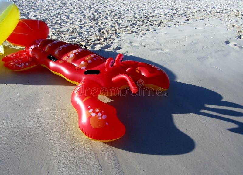Nadmuchiwany homar unosi się w piaskowatej plaży fotografia royalty free