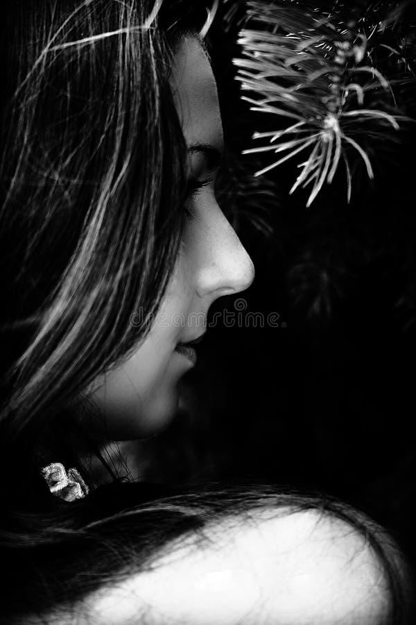 nadya s ονείρων στοκ εικόνες
