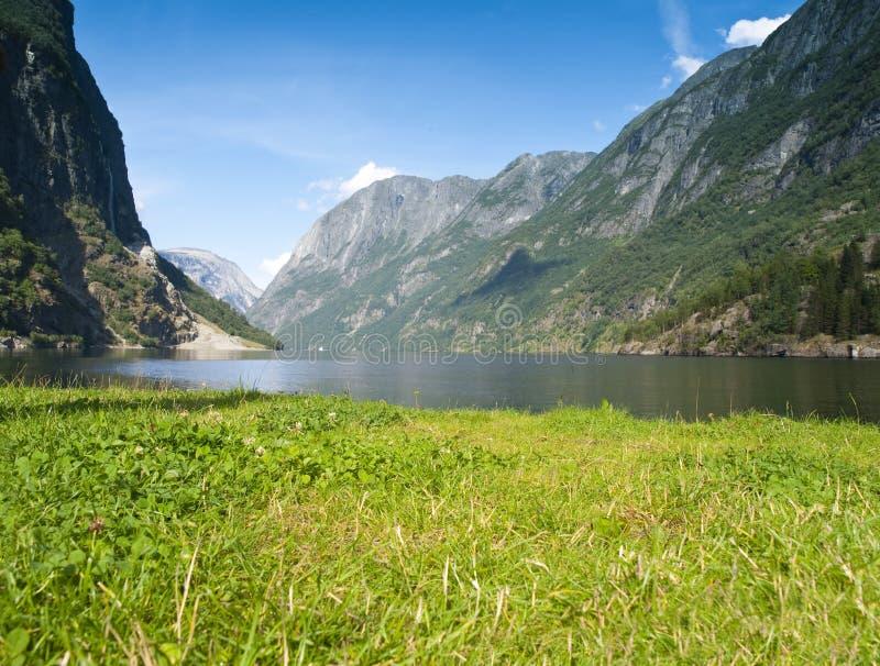 naeroyfjord сценарное стоковое фото
