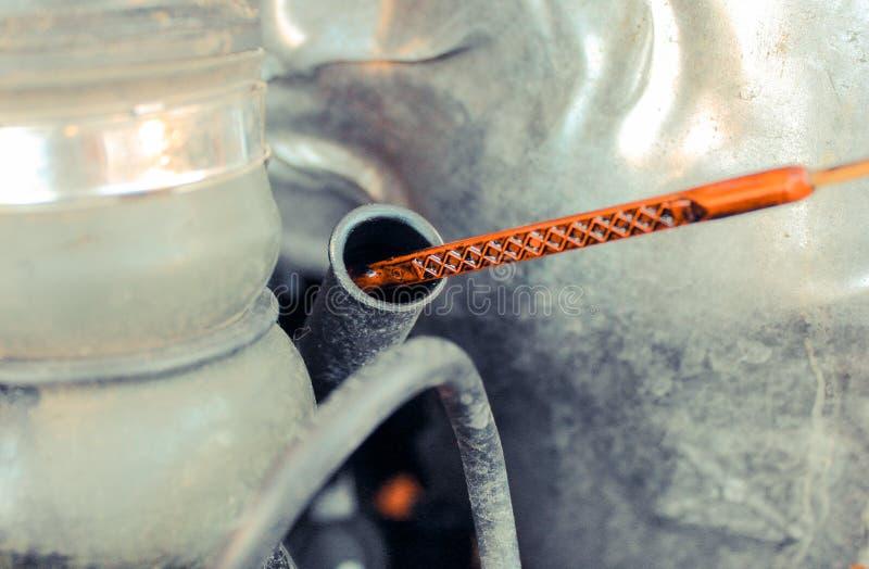 Nafciany dipstick dla sprawdzać nafcianego poziom w samochodowym silniku obraz royalty free