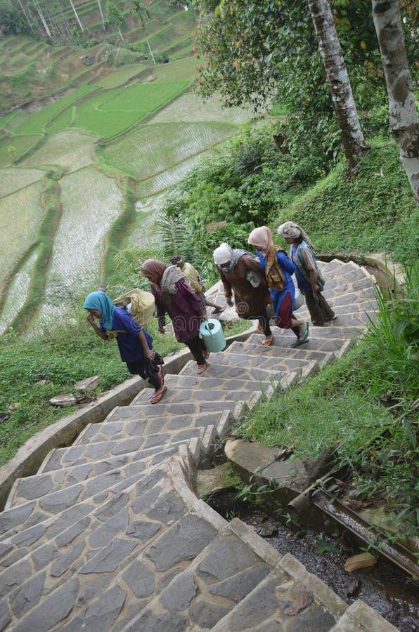 Naga de Kampung para mujer imagen de archivo libre de regalías