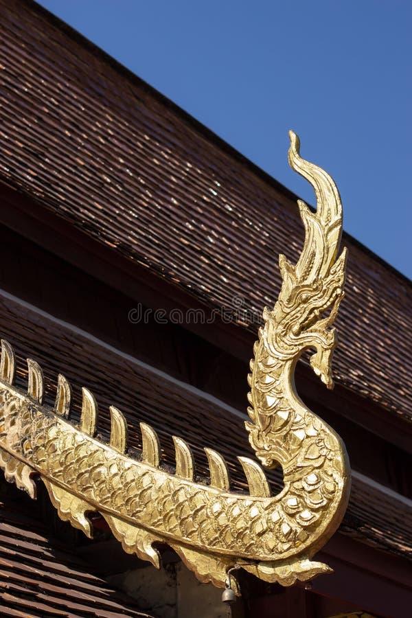 Naga de oro fotos de archivo