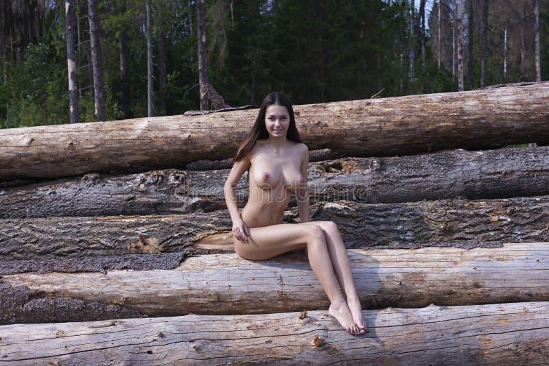 Download Naga Dziewczyna Z Dużymi Tits Obraz Stock - Obraz złożonej z femaleness, nude: 41955351