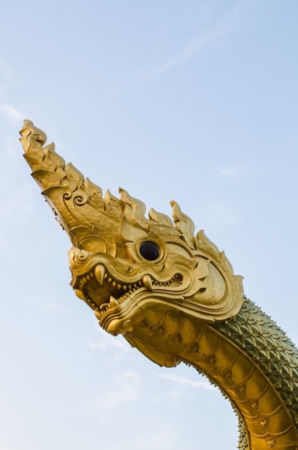 Naga photos libres de droits